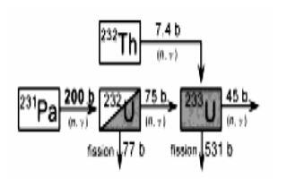 Th-232 - U233